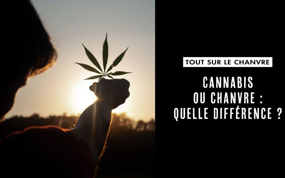 Chanvre et cannabis : la difference